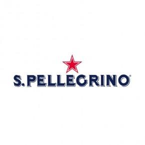 Acqua S. Pellegrino Frizzante VAP 25 cl