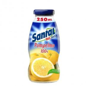 Santal Pompelmo 100% 25 cl