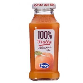 Yoga Albicocca 100% Frutta 20 cl